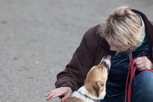 Anne-Sophie Muffat - Comportementaliste pour chiens et chats – éducation positive pour chiens de compagnie
